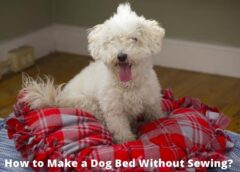 How to Make A Dog Bed Without Sewing!