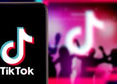 TikTok Followers Growth -