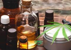Debunking The Myths Around CBD Products